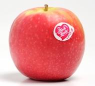 manzana-pink-lady