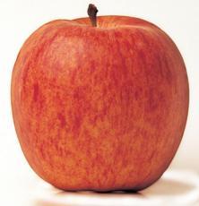 manzana-royal-gala